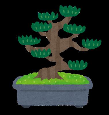 寄せ植え盆栽