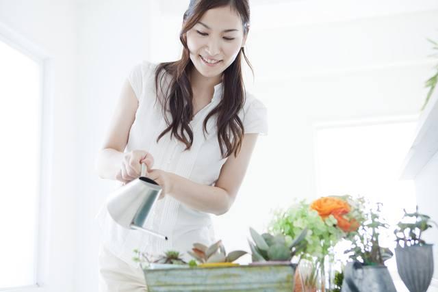盆栽の水やりにおすすめの道具3選