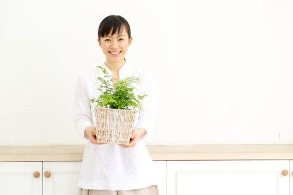 盆栽カフェ
